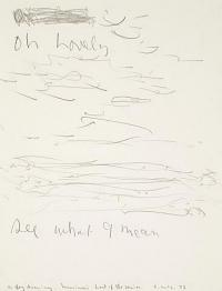<em>A fog drawing</em>, 1973