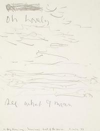 <em>A fog drawing</em>, 1973